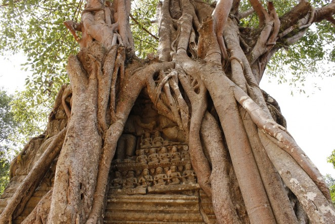 Древний город Ангкор, Камбоджа