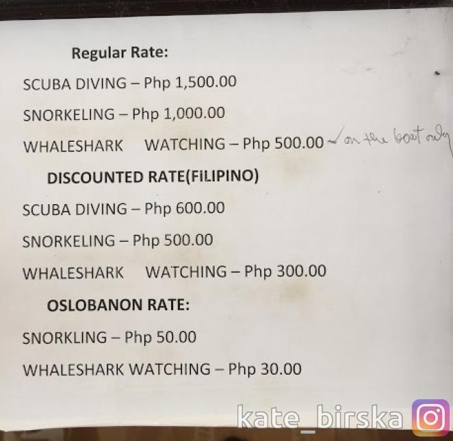 Официальные цены на плавание с акулами