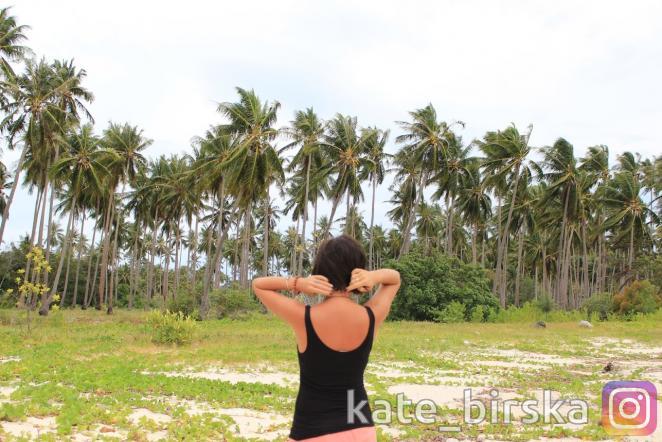 Пальмы на острове Самуи, Таиланд
