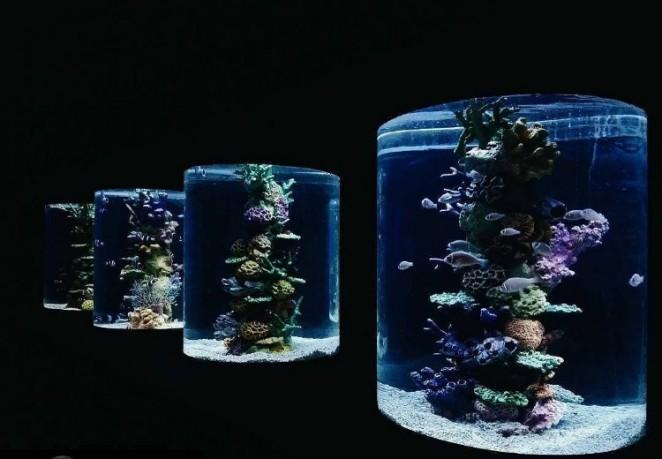 Океанариум в Маниле