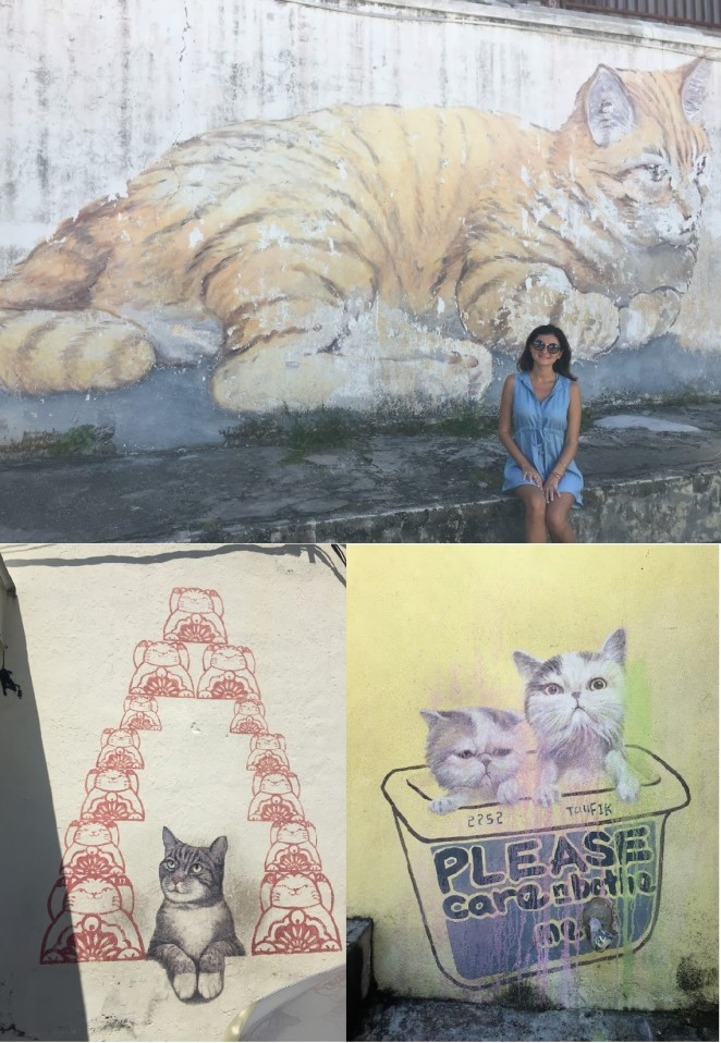 Кошки на Пенанге