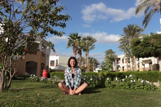 финиковые пальмы, Египет