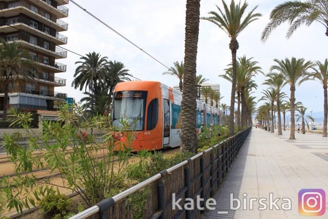 Городской транспорт в Аликанте