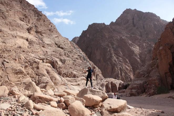 Экскурсии в Шарм-эль-Шейхе
