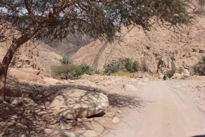 оазис в пустыне, Египет