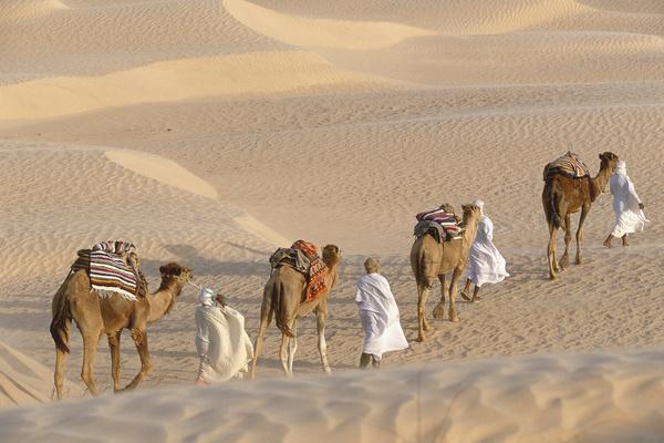 Закат в Сахаре, Тунис