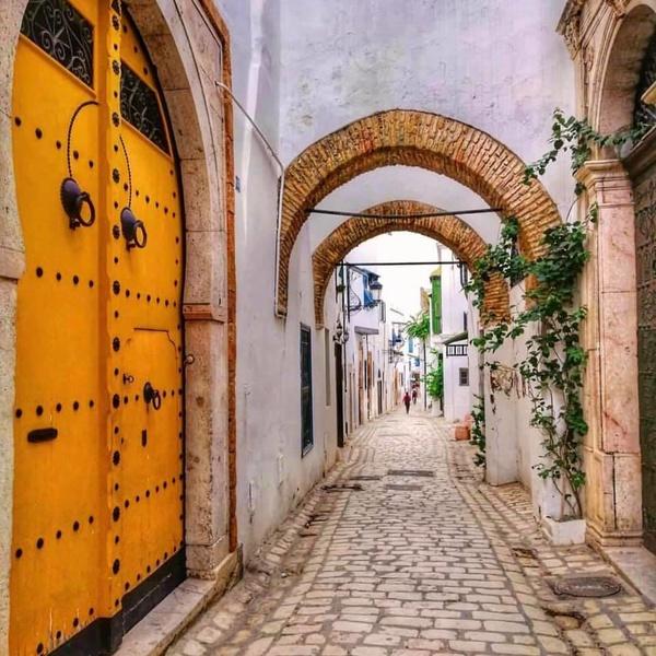 Тунис из Киева